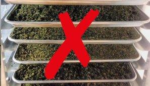 Cannabis Racks Cannabis Drying