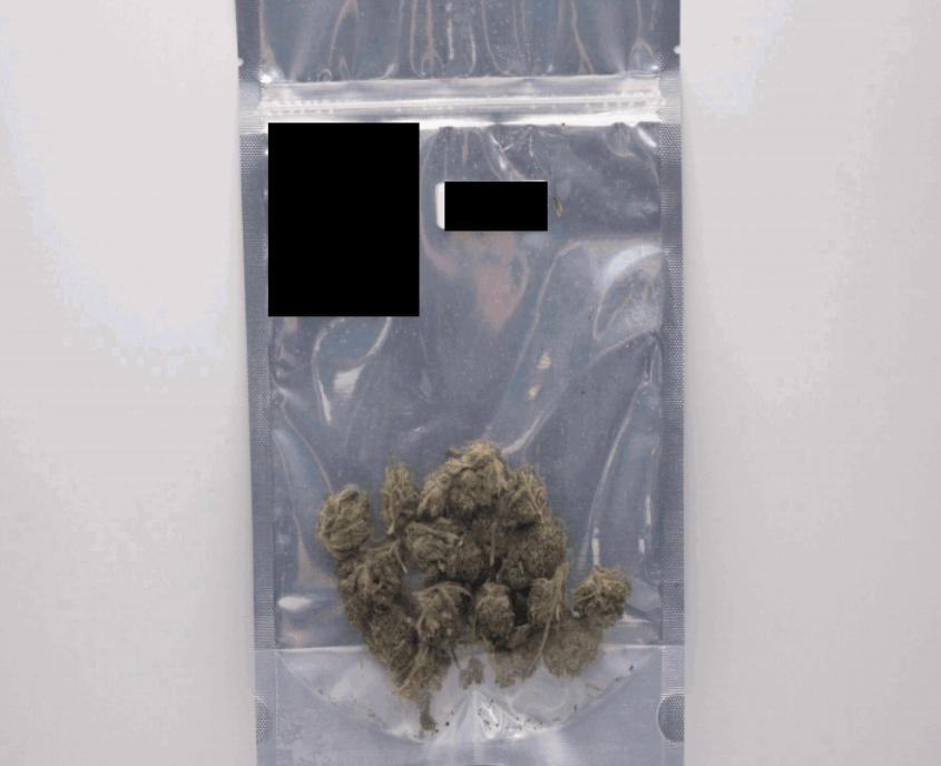 2 Cannabis Drying